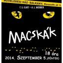 Macskák előadás 2014. szeptember 5. (péntek)
